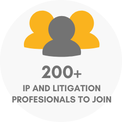 100+ IP and litigation professionals